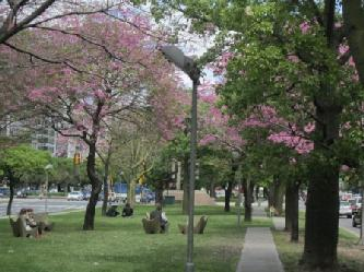 Visita a Buenos Aires City tours in Buenos Aires